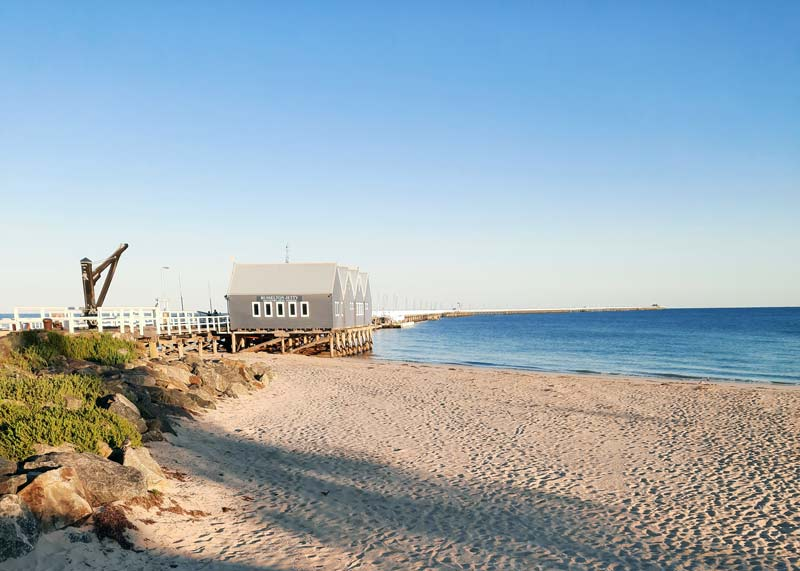 view of Busselton Jetty from the North side on the beach. The jetty curve off in the distance. The sky is clear and pale blue, with the shadows of palm trees across the sand in the foreground